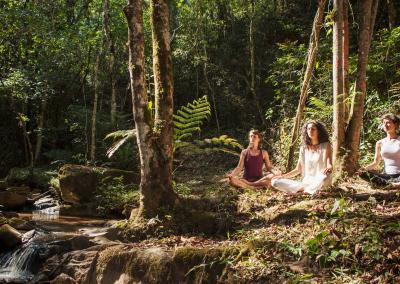 Meditação, Vivências Corporais e Caminhadas
