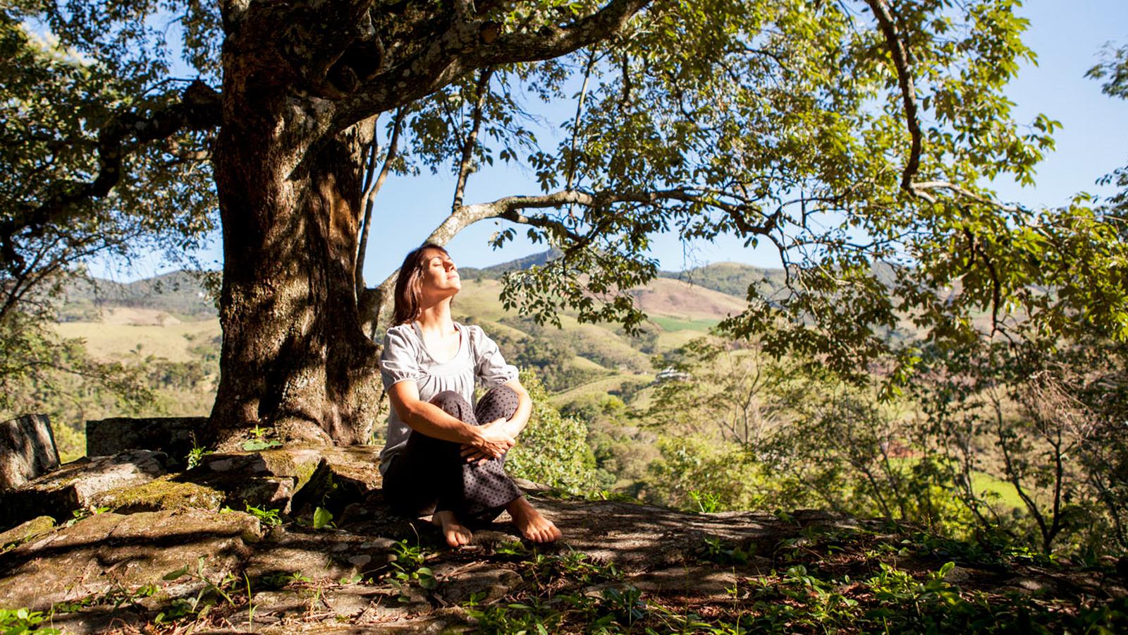 mulher sentada na árvore Ponto de Luz